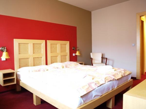 Hotel Alpina fotografie 4