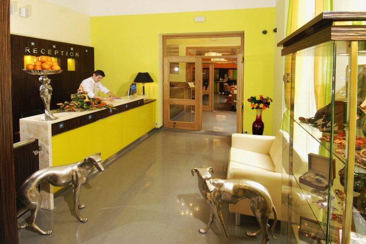 Hotel Manes photo 10