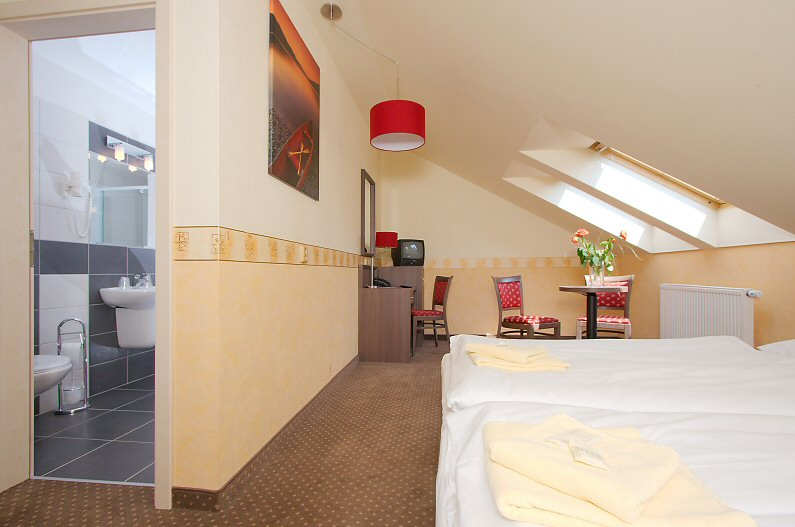 Hotel Ostrůvek fotografie 5